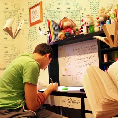 Regularización de Matemáticas, Física, etc.